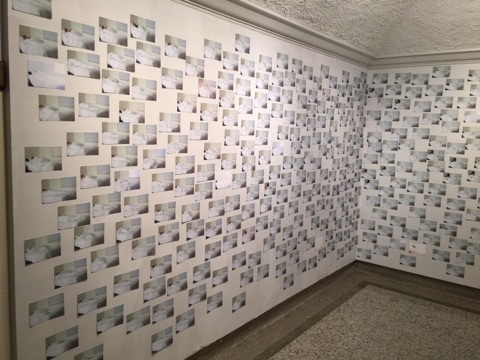 "Over 750 photographs of myself sleeping over the course of ~1 week installed for ""Thoughts in Slumber"" at the Dahl Gallery in Great Falls, MT (2016)"