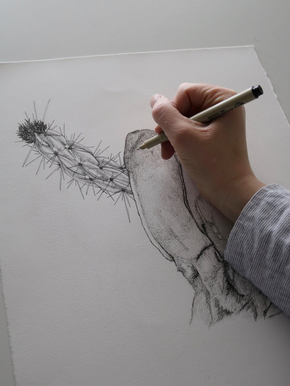 Drawing in process. Image courtesy of the artist.