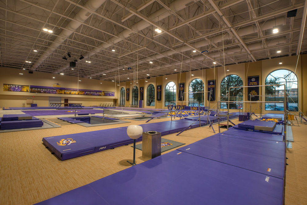 LSU Gymnastics 7.jpg