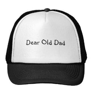 dear_old_dad_hat-r5fe89aae904d45b6851f370fbc50e638_v9wfy_8byvr_324