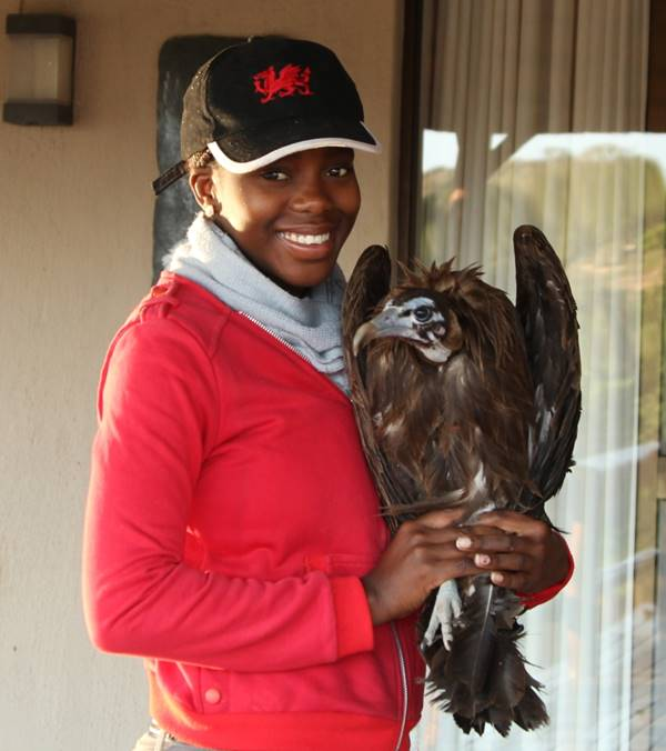 Hawk Mountain trainee Nobuhle Mabhikwa holding the retagged Homebody in the Olifants River Private Game Reserve in June 2014.