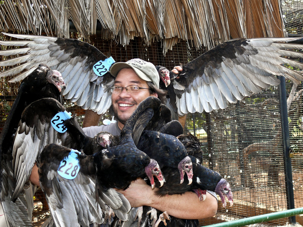 adrian naveda rodriguez with many vultures.jpg