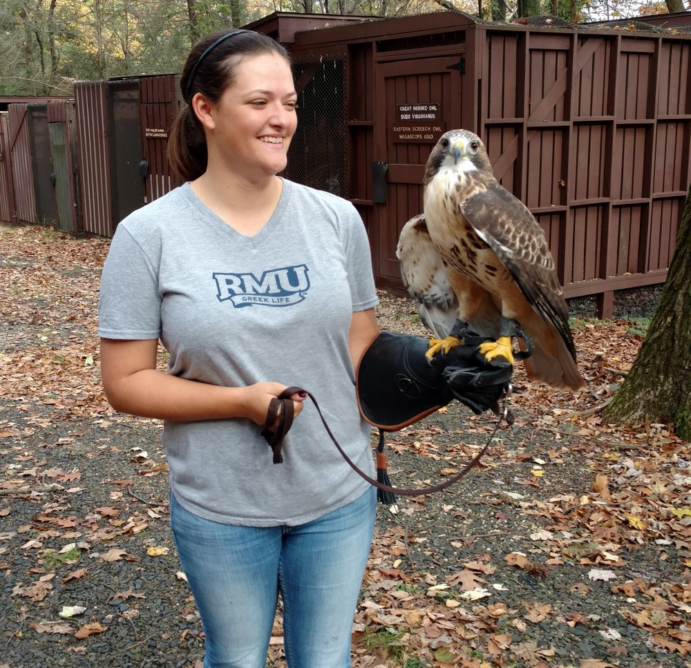 Adehl practicing raptor care with the Sanctuary's red-tailed hawk.