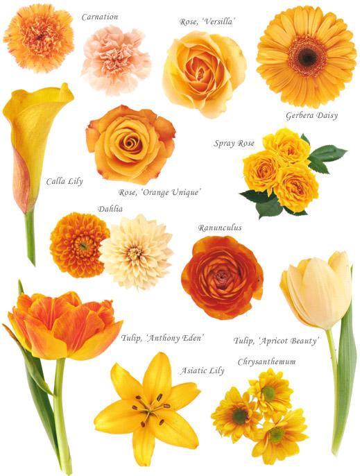Wedding Flowers Bouquet Orange