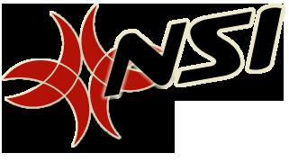 NSI.png