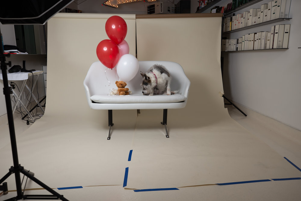 behind the scenes at Liberty-0094.jpg
