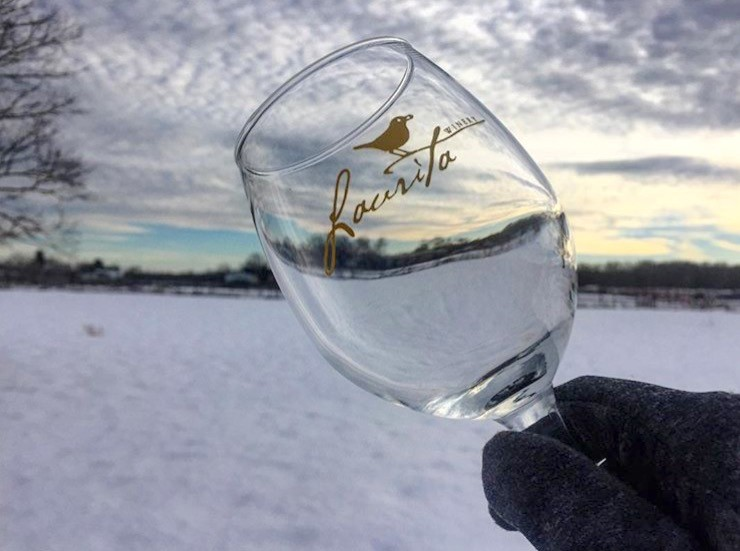 Visit Laurita Winery for their annual winter festival. The festival includes sleds, min-snowmobiles, ice sculpting contest, food trucks, live music, fire pits and fireworks. For more information click  here .