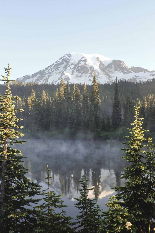 Early morning fog on the lake in Mt Rainier National Park, Washington