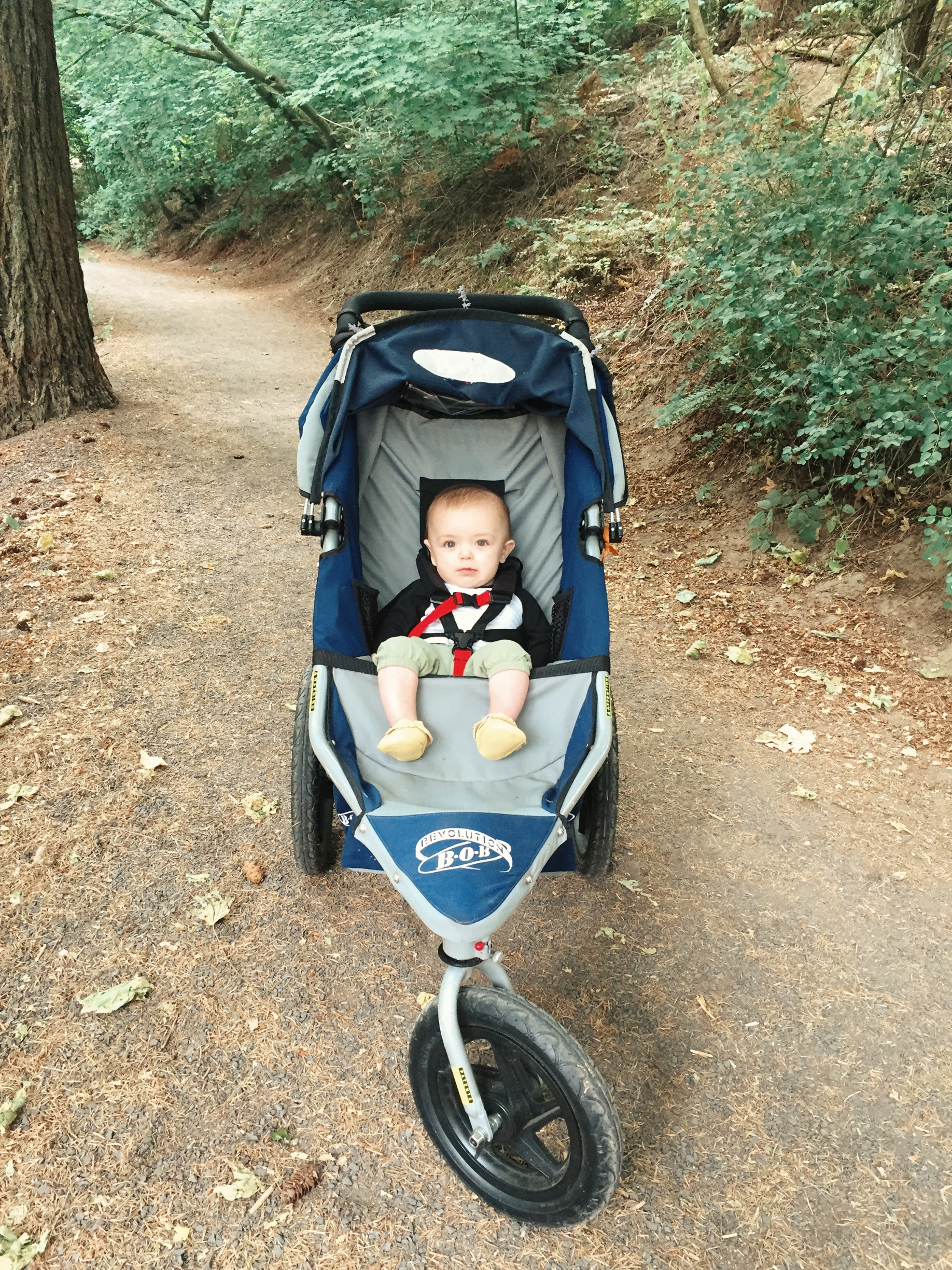 stylish running stroller