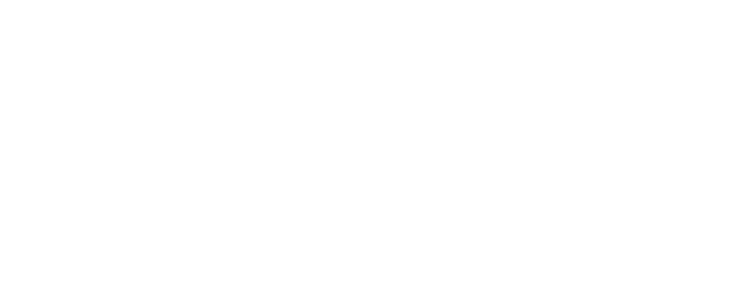 Custom Van Builder | Vanlife Customs