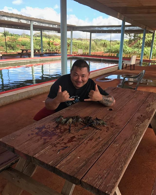 Brenden tied the record at 9 prawns at Ali'i Agriculture farms. #prawnsfishing.