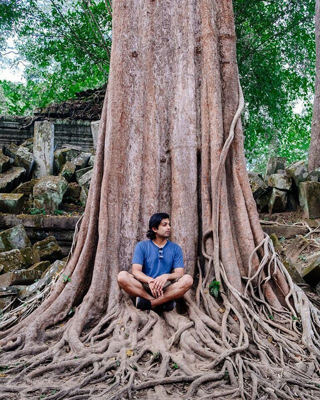 Giant banyan trees like this one have reclaimed their place at Beng Mealea, making ruins of the 900 year old temple.