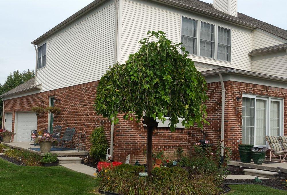 Exterior Home Remodel Northville, MI