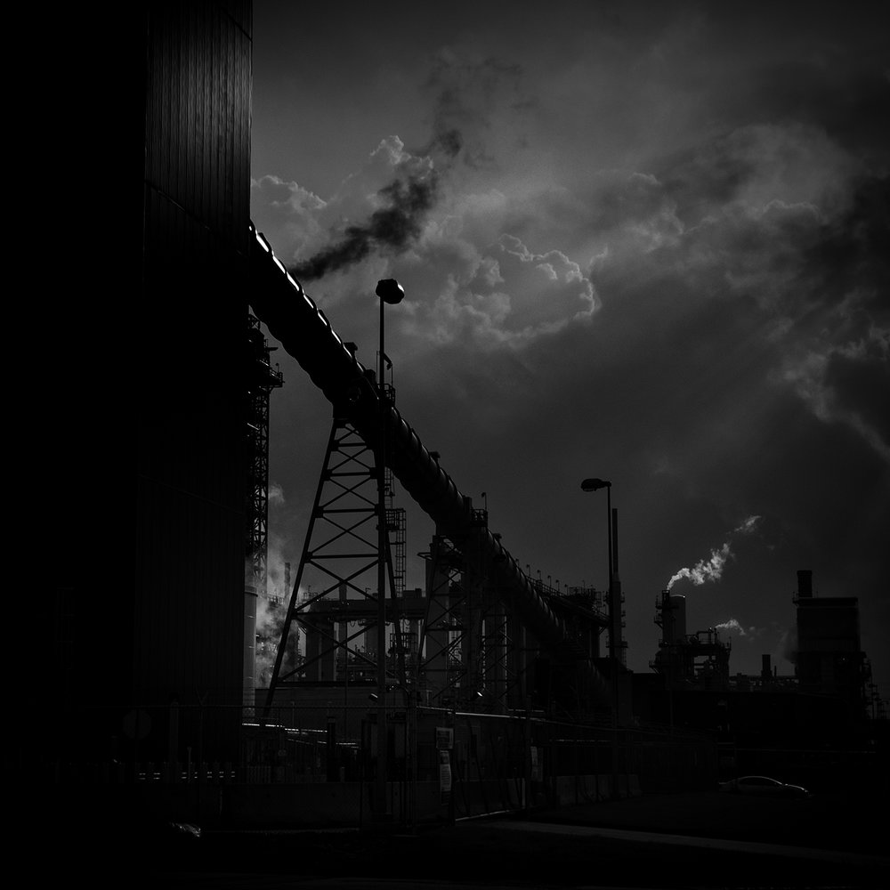 Black and White Industry, 2013