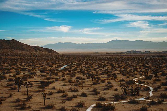 Landscape shot I took at Saddle Back Butte State Park in Palmdale. #landscape #landscapephotography #nature #sky #photography #photooftheday #nikonphotography #nikon #outdoors #instagram #palmdale #mountains #thenikonjunkie #california #desert #joshuatree