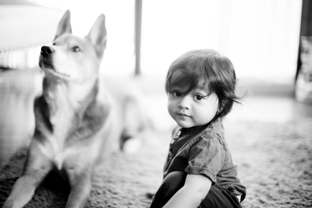 Babyphotographynyc.jpg