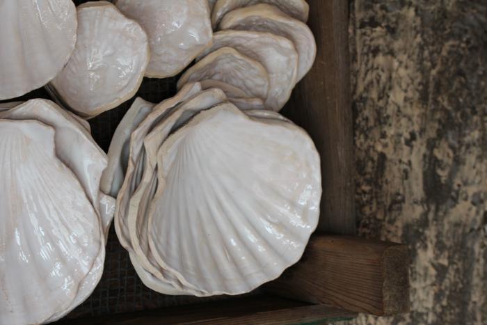 daladier-oyster-shell-ceramics.jpg