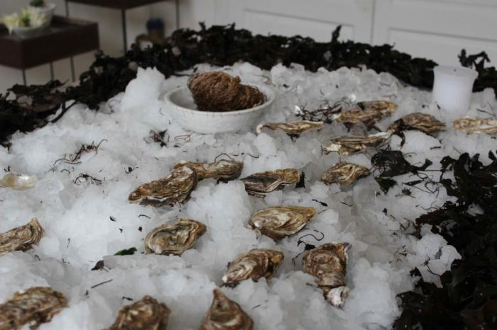 daladier-oysters-on-ice.jpg