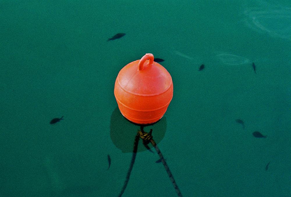 Buoy, 35mm, Skopelos, 2018