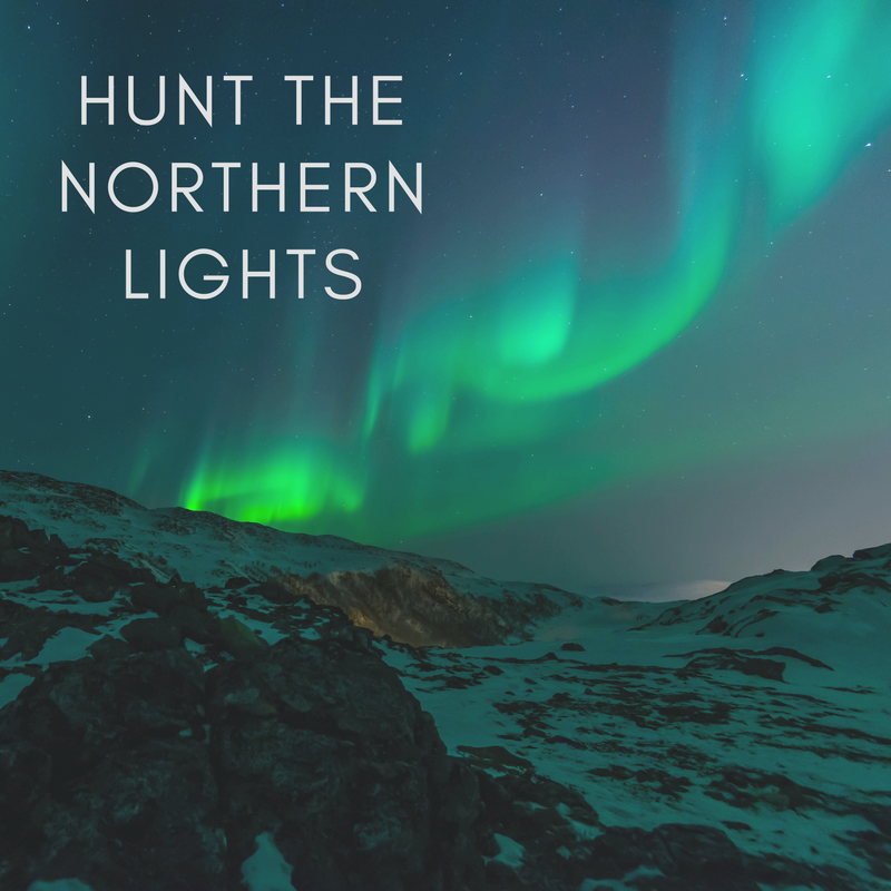 curio.trips.northern.lights.png