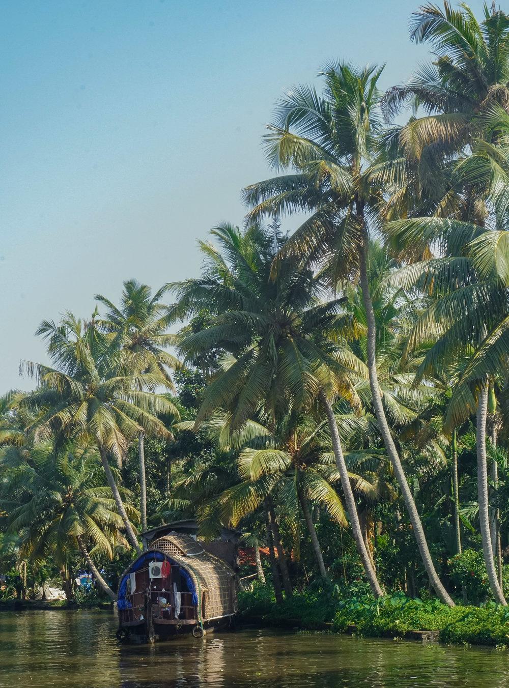 curio.trips.india.kerala.backwaters.houseboat.jpg