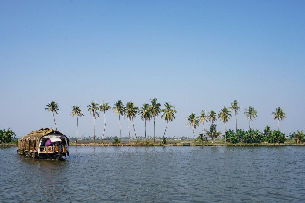 curio.trips.india.kerala.houseboat.palmtrees.landscape.jpg