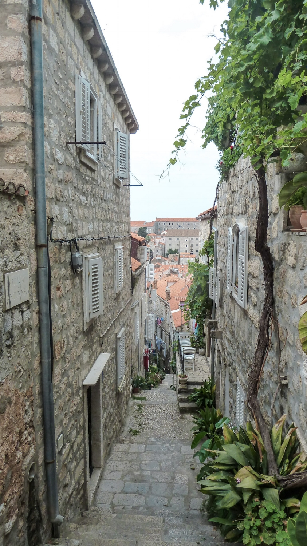 curio.trips.croatia.dubrovnik.steps.1.jpg
