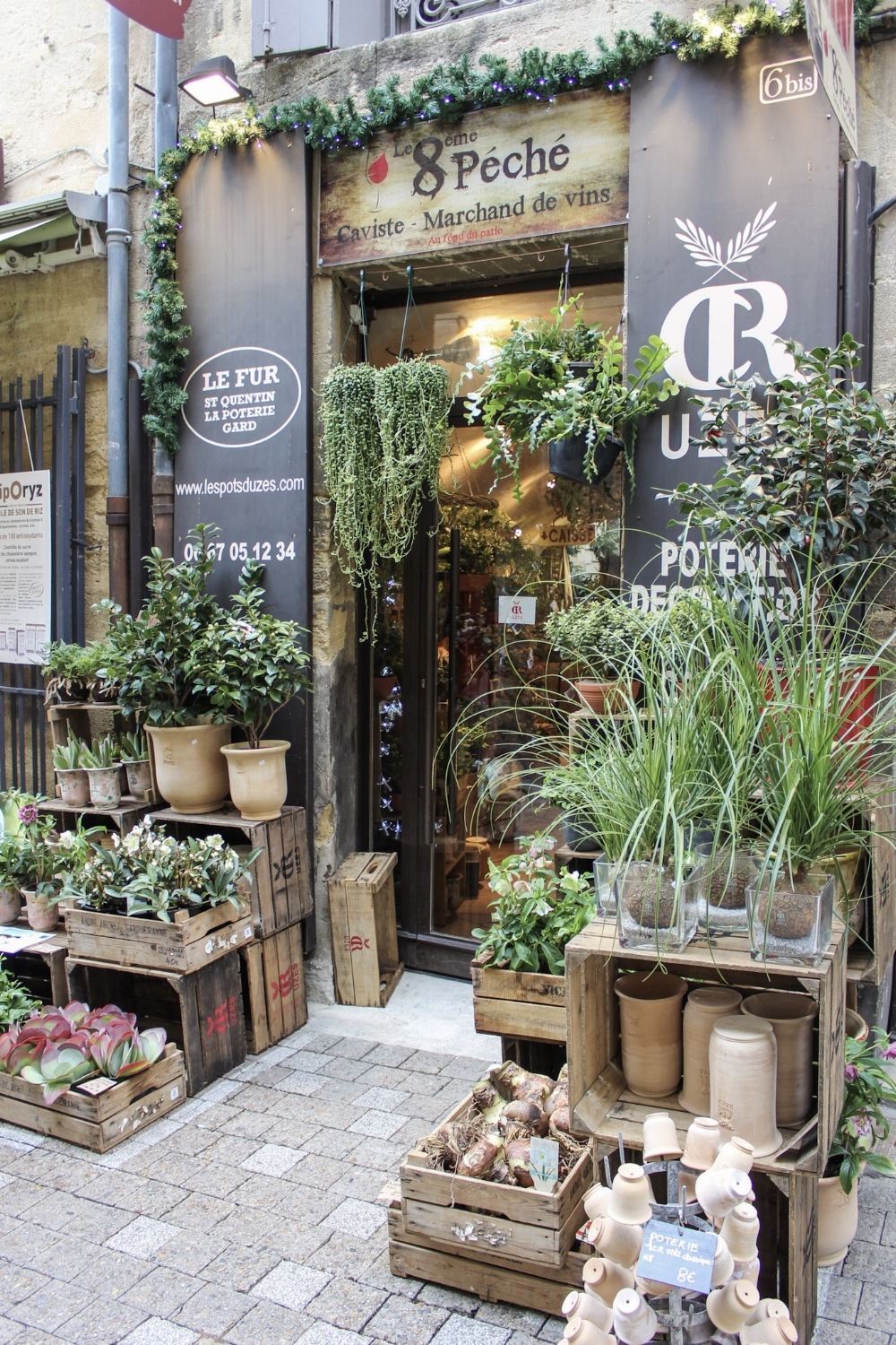 curio.trips.provence.flower.shop.jpg