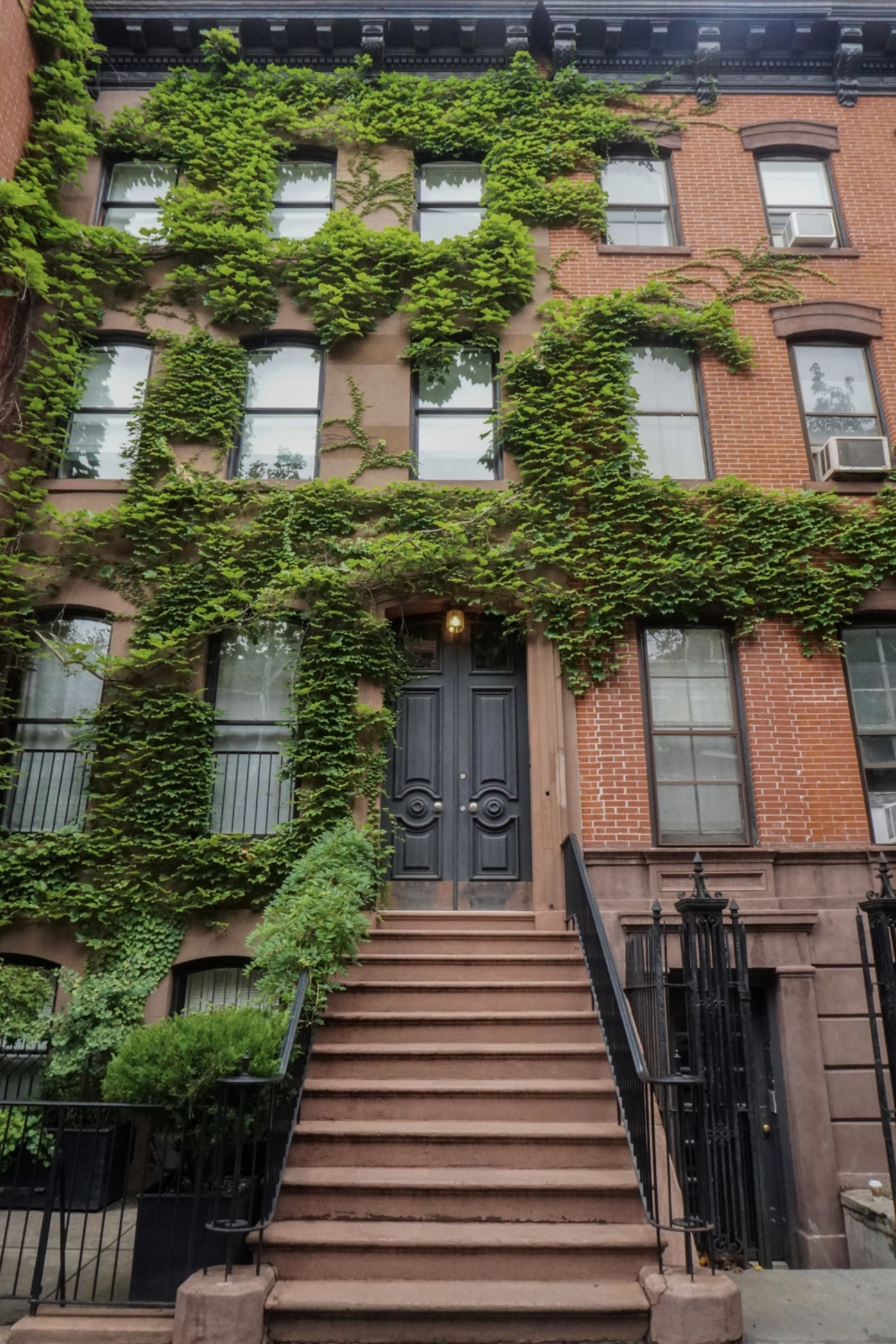 curio.trips.usa.nyc.greenwich.village.ivy.house.jpg