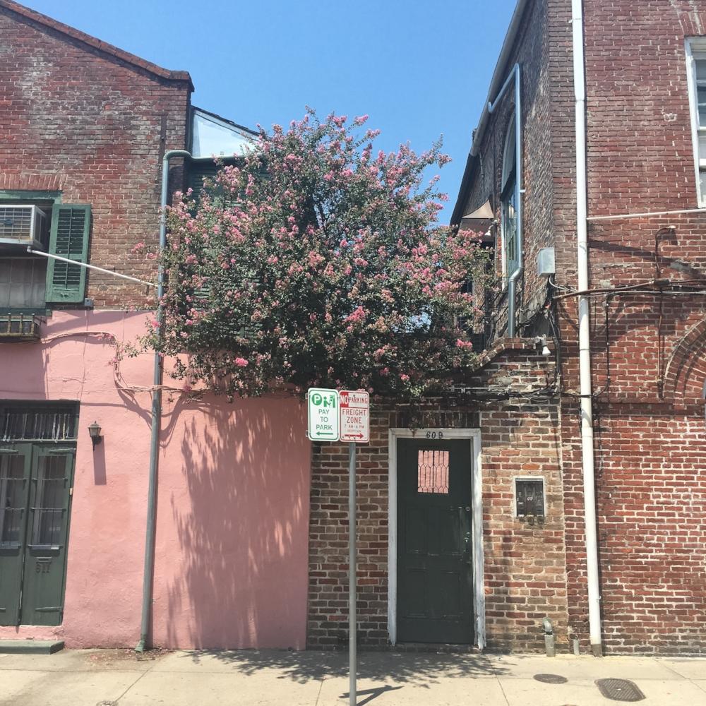 Pink house NOLA.jpg