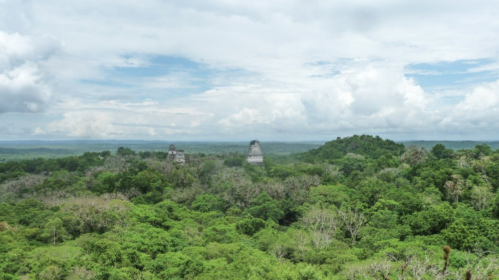curio.trips.guatemala.tikal.from.above.jpg