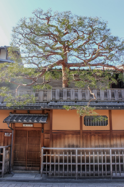 curio.trips.kyoto.house.jpg