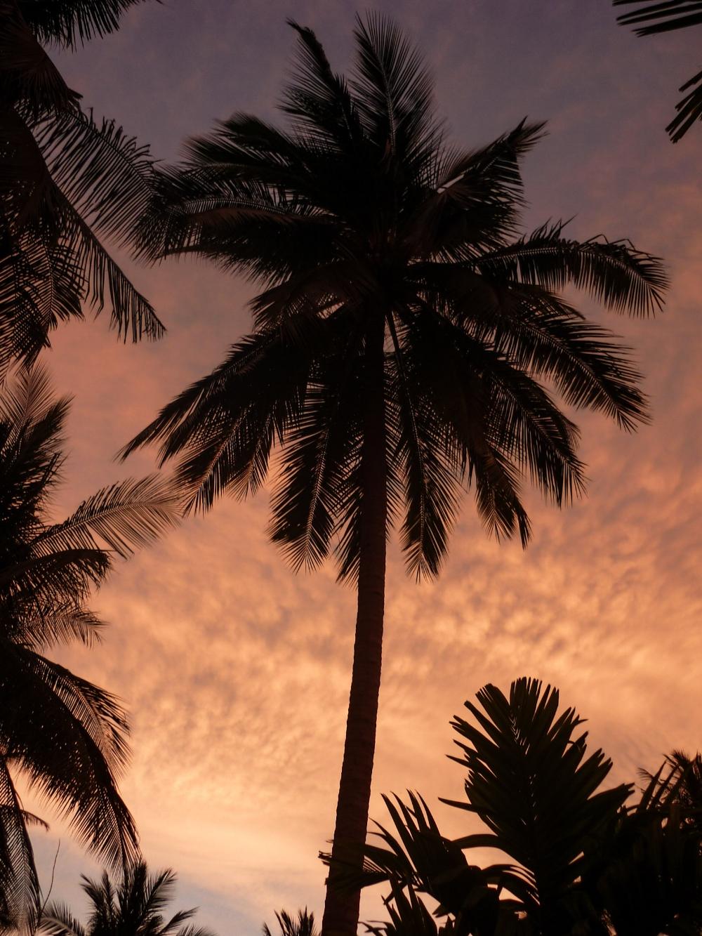 curio.trips.thailand.sunset.jpg