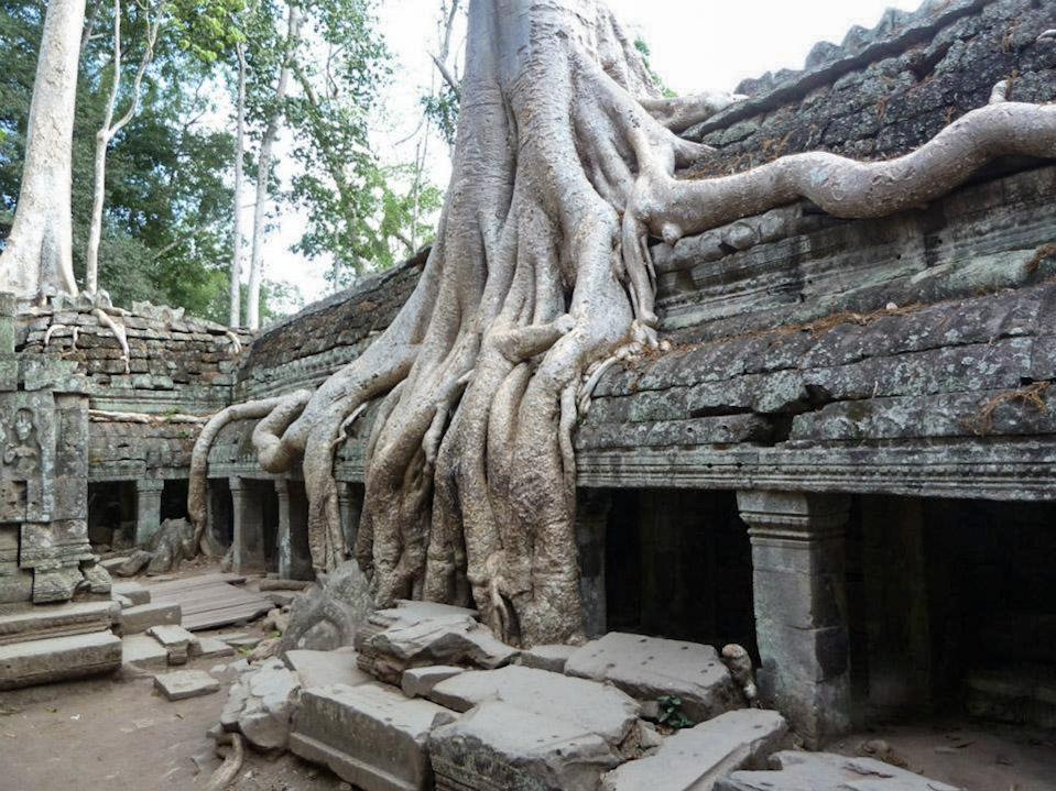 curio.trips.cambodia.angkor.wat.5.jpg