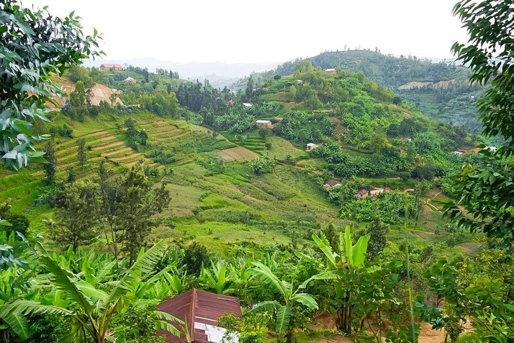 curio.trips.rwanda.thousand.hills.view.landscape.jpg