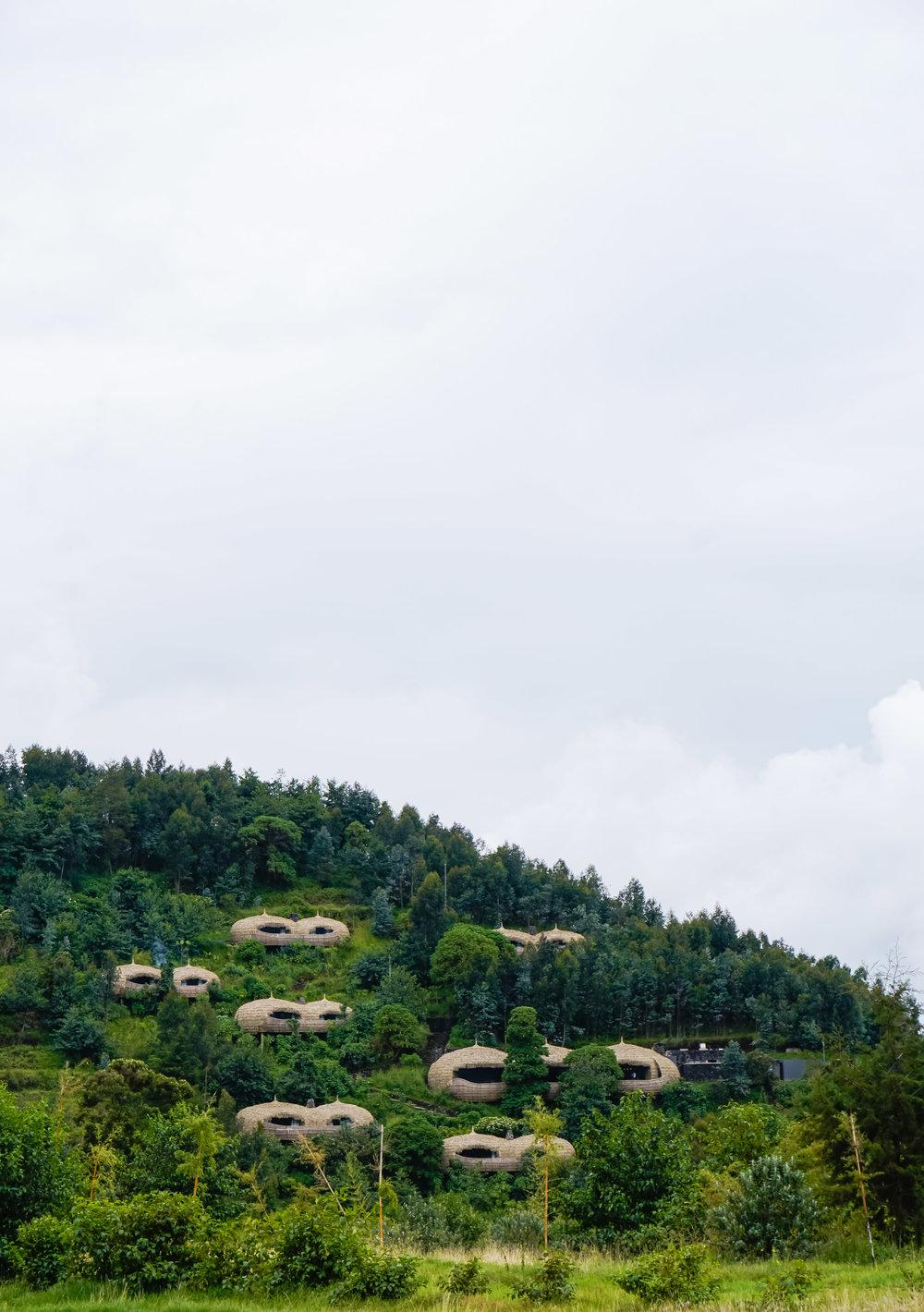 curio.trips.rwanda.bisate.lodge.drive.ip.view.IG.story.jpg