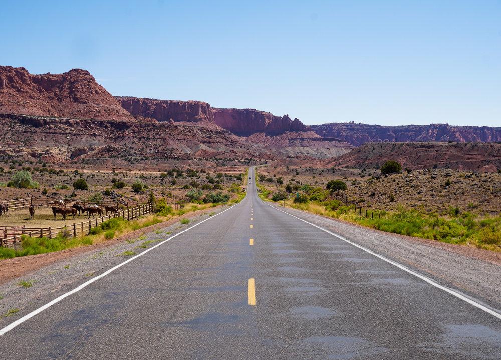curio.trips.usa.utah.capitol.reef.road.landscape.jpg