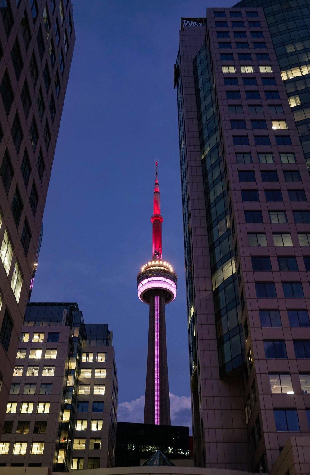 curio.trips.canada.ontario.toronto.cn.tower.night.view.jpg