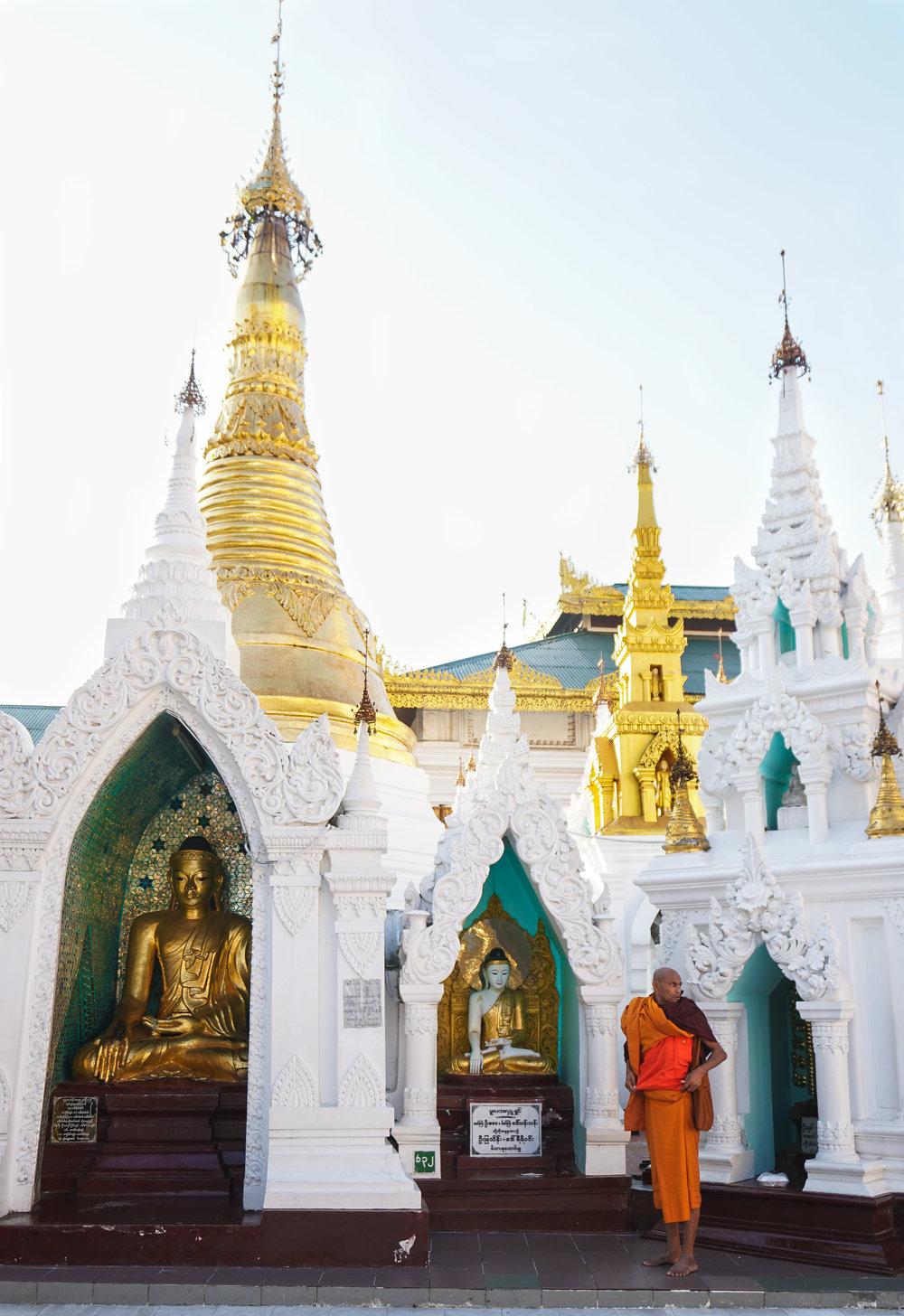 curio.trips.myanmar.yangon.pagoda.white.green.monk.portrait.jpg