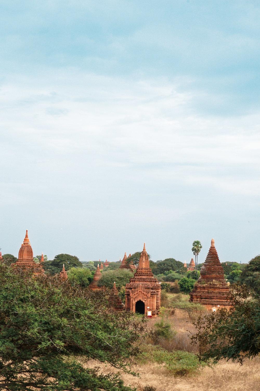 curio.trips.myanmar.bagan.pagoda.skyline.portrait-3.jpg