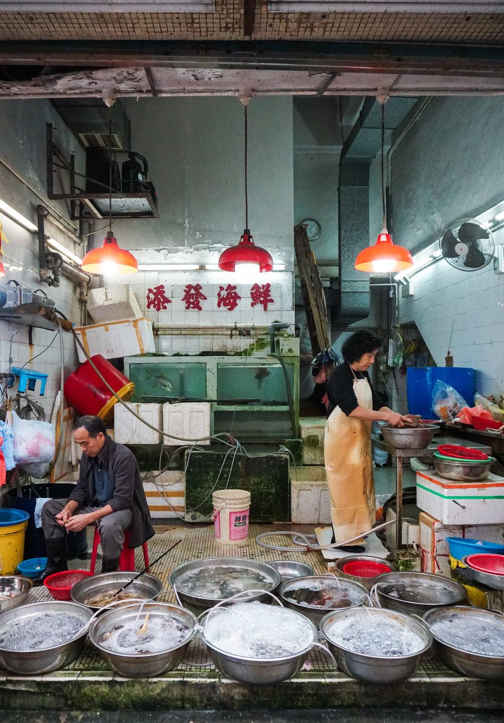 curio.trips.hong.kong.night.fish.shop.couple.portrait.jpg