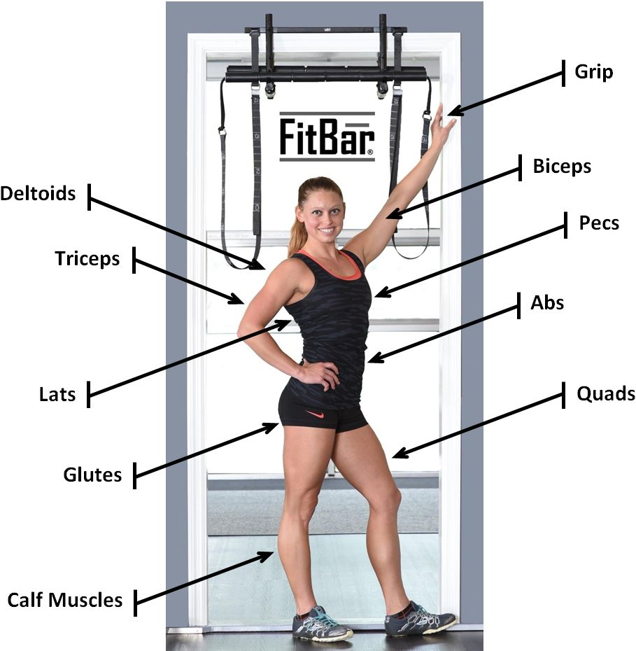 Muscle Activation with FitBar Trainer