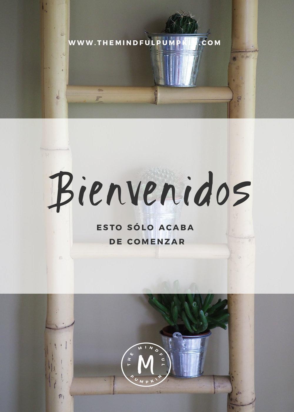 Bienvenidos Blog Header