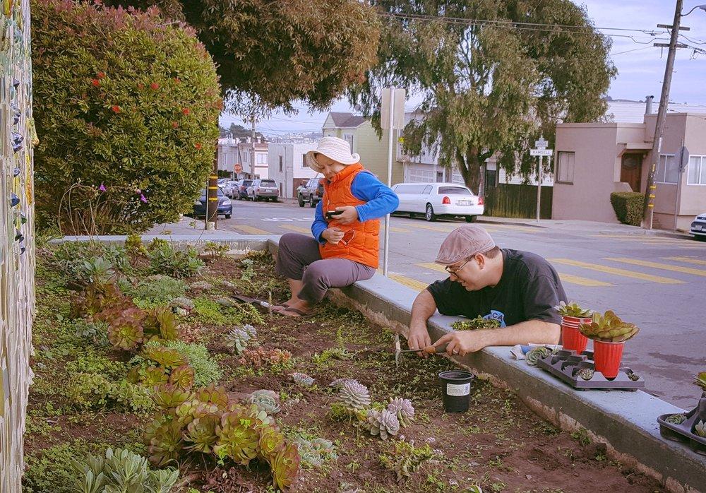 Working on the succulent garden.