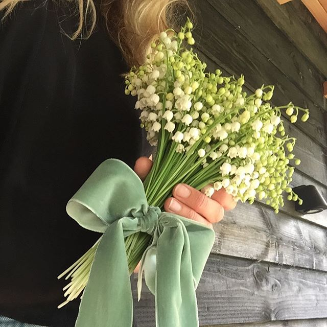 Lily of the valley in the garden, flowers to fall in love with #wedding #flowers #ceciliaweddings