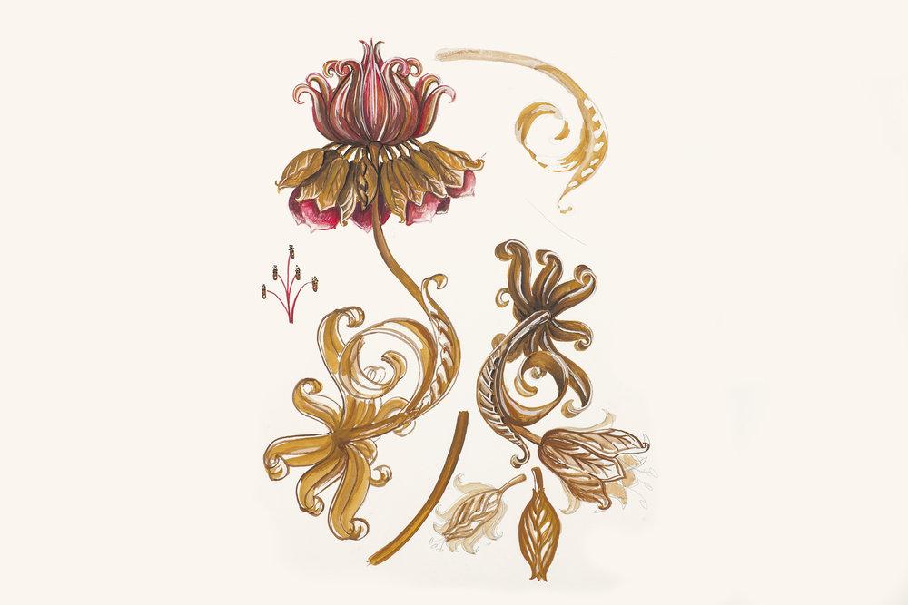 estudo de flores para estampa Teca [guache]
