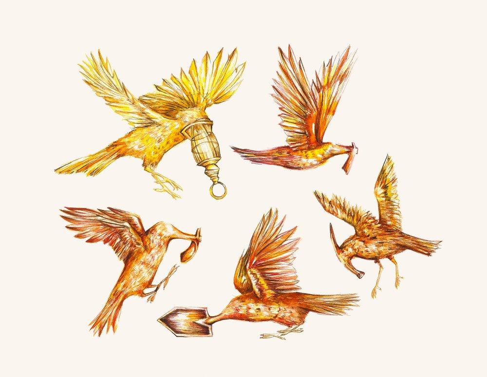 estudos para estampa pássaros afiados[aquarela]