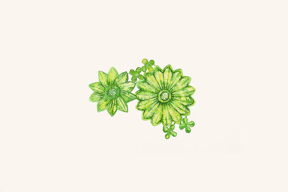 estudo para estampa botânica [aquarela e ecoline]
