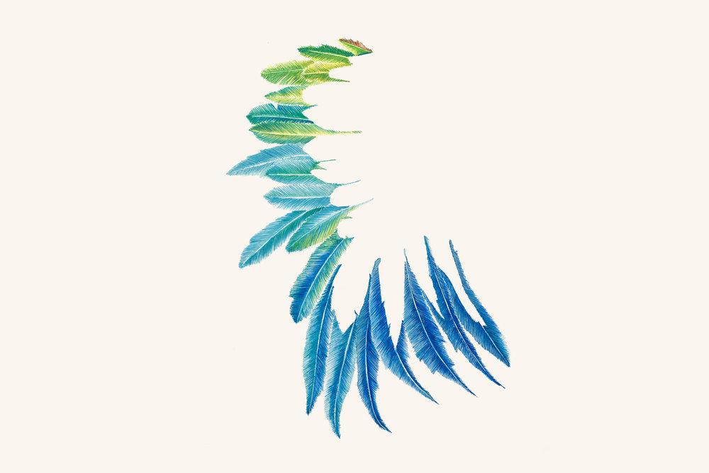 estudo para estampa asas[aquarela]