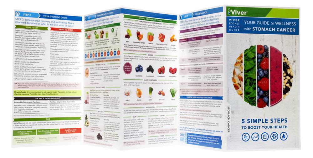 Viver-guide3.jpg